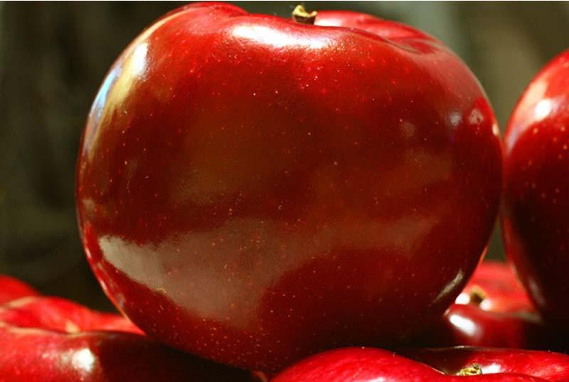りんごを見る視点